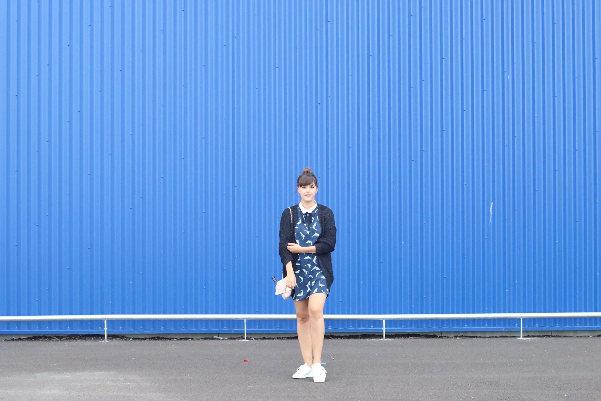 mur-bleu-mode