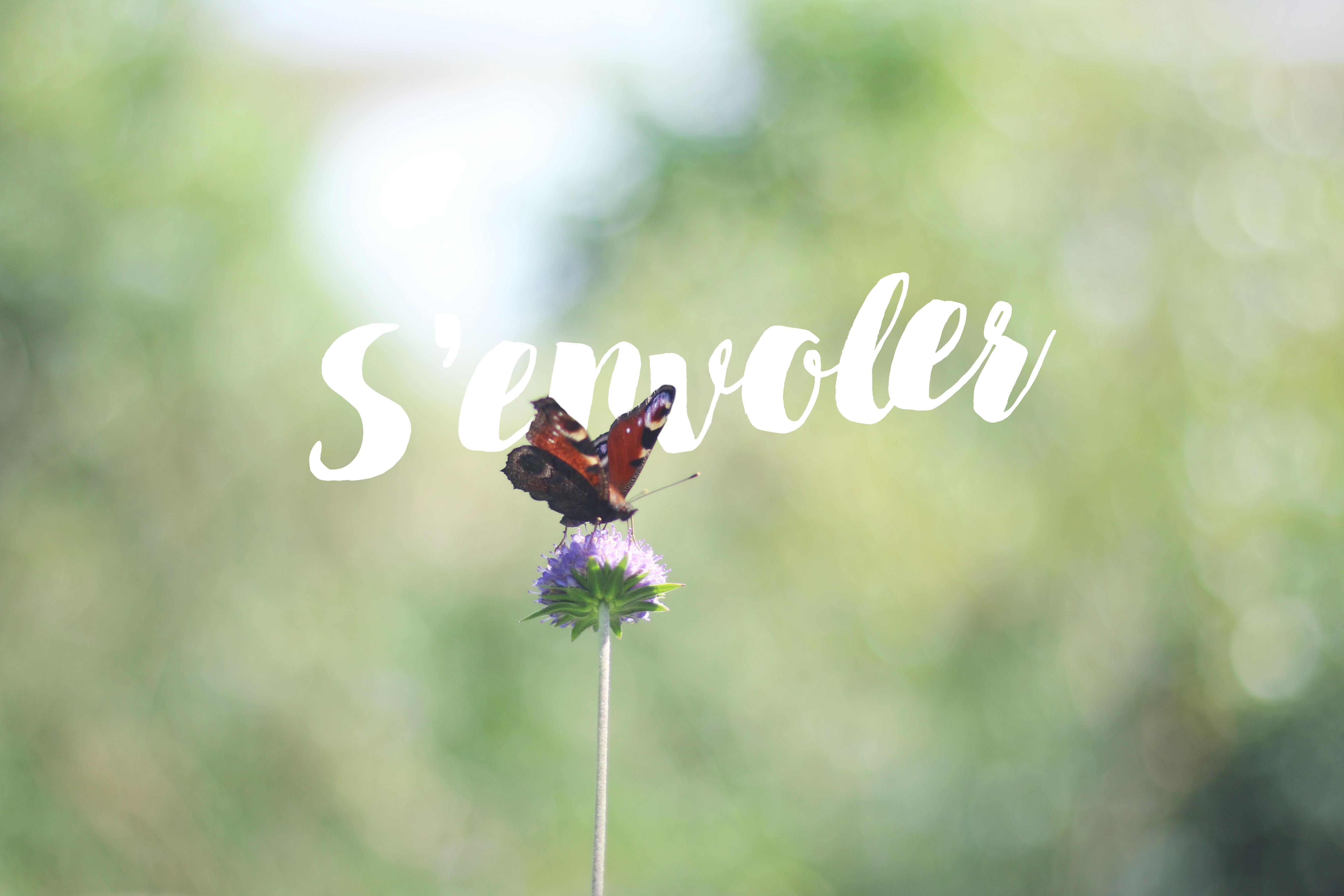 s-envoler-blog