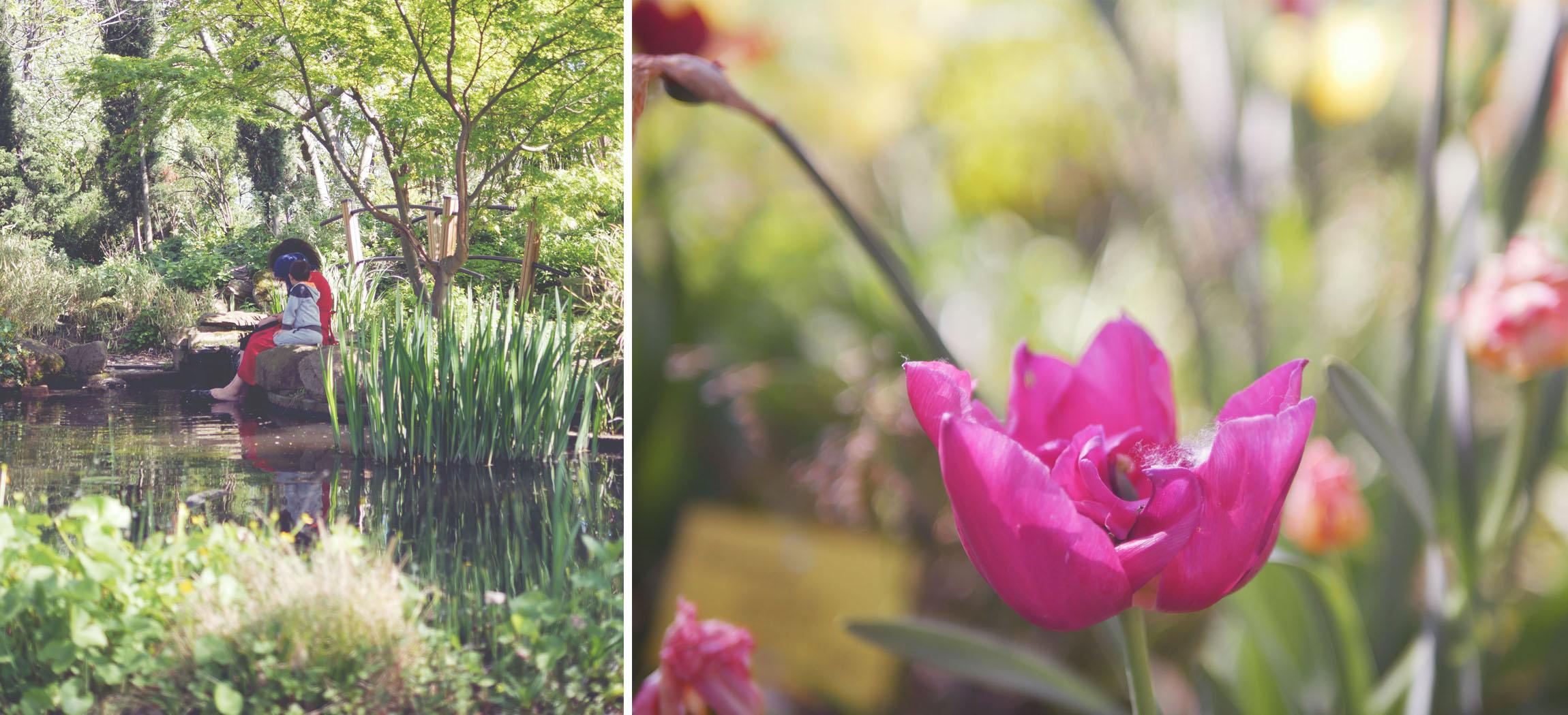 jardin-de-la-charme-clermont